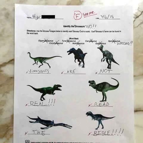 dinosaurios, religión y creacionismo